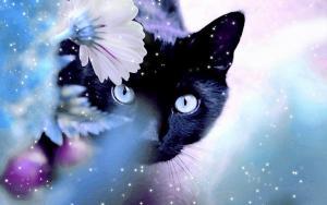 Фотосессия Мартовские коты и кошки